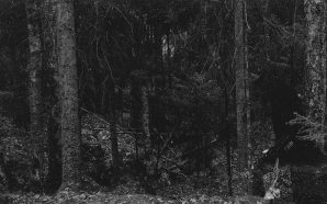 Horna – Haudattujen Tähtien Yönä (Track Premiere)